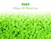stock photo of saint patricks day  - Green clover holiday border - JPG