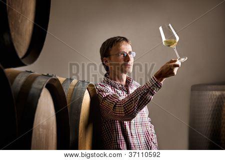 Productor de vinos inspección de calidad de vino blanco en Bodega frente barriles.