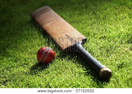 Bate de Cricket y la bola en el verde césped del campo de cricket