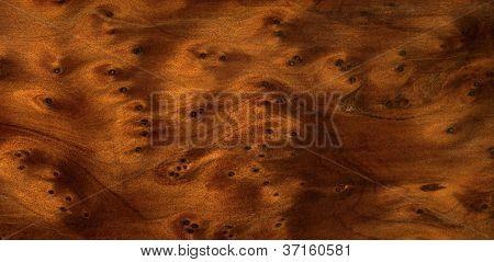 Brown Burl Wood Detail