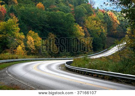 Scenic road through colorful trees in Allegheny national forest