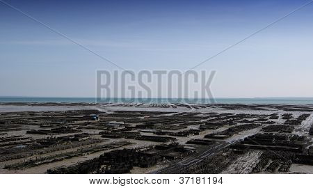 Oyster parks in Cancale, Bretagne, France