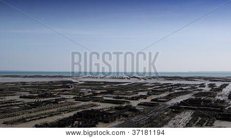 Parques das ostras em Cancale, Bretagne, France