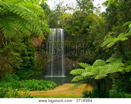 The Millaa Millaa Falls