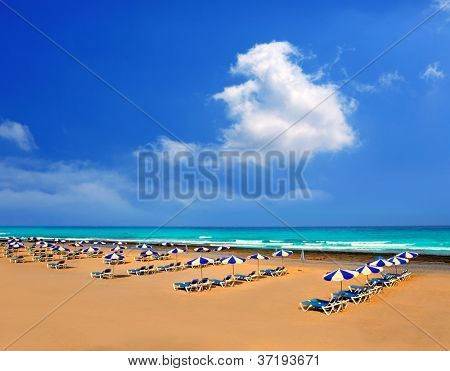 Adeje Arona Beach Troya Playa Las Americas in Tenerife South