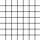 picture of graph paper  - black grid on white - JPG
