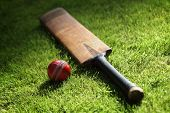 foto of cricket  - Cricket bat and ball on green grass of cricket pitch - JPG