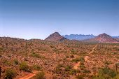 picture of ore lead  - Desert road in the Arizona mountains leading to a mine - JPG
