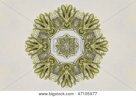 Lace Doily Abstract