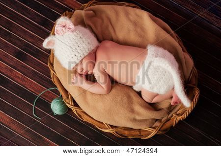 Newborn Baby Girl In Kitten Costume