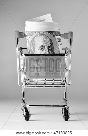 bundle of dollars is watching out of shopping cart