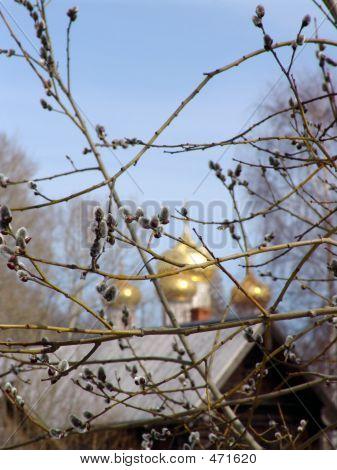 Russian Palm Sunday