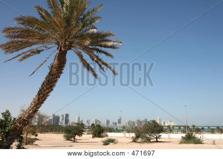 Nuevo horizonte de Doha