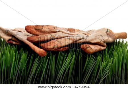 Old Worn Workgloves On Green Grass