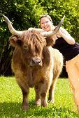 stock photo of highland-cattle  - young beautiful woman hugs an highland cattle - JPG