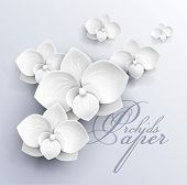 foto of paper craft  - paper flowers background  - JPG