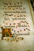 Illuminated Manuscript, In Medieval Library poster