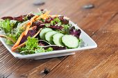 picture of romaine lettuce  - Colorful serving of arugula leaf organic salad with fennel - JPG