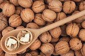foto of walnut  - Wooden spoon with walnuts on a background of a walnut - JPG