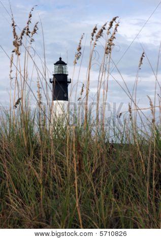 Lighthouse and Sea Oats
