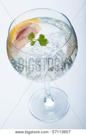 Grapefruit And Parsley Gin Tonic Isolated Over White