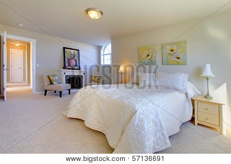 Elegant Large Bedroom