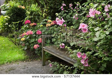 Country-style Garden With Bench And Flowers