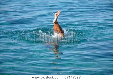 Man Plunging In Sea Water