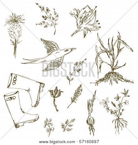 Garden herbs sketch with birds plants gumboots