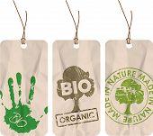 Постер, плакат: Гранж Теги для органических Био Эко