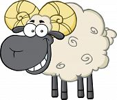 image of ram  - Smiling Black Head Ram Sheep Cartoon Mascot Character - JPG