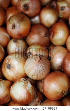 the onions very fresh at street market, thailand
