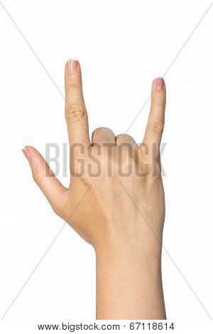 A Woman's Hand  Isolated On White Background
