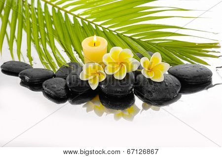 Zen stones and Frangipani and candle and palm leaf