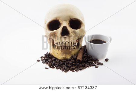 Human Skull Soak And Coffee Cup