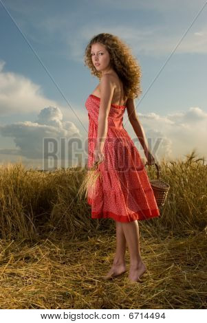 Beautiful girl pose in wheat field with basket