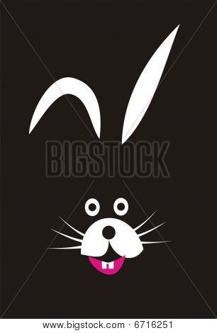 Boogey Bunny