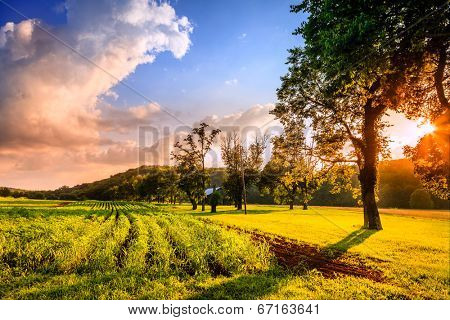 Rural Kentucky sunset