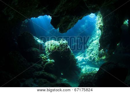 Sunlight enters underwater cave like a spotlight