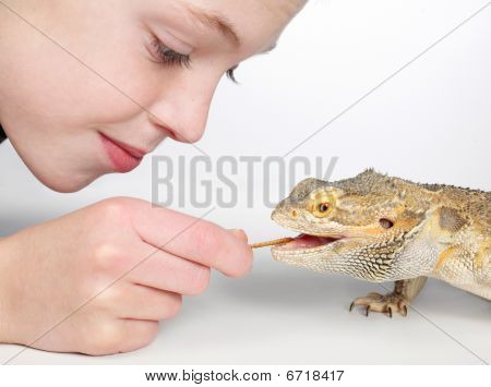 Boyfeedinglizard