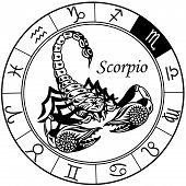 stock photo of scorpio  - scorpion or scorpio astrological zodiac sign - JPG