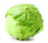 picture of iceberg lettuce  - Green Iceberg lettuce on white background - JPG