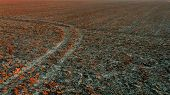 picture of plow  - Plowed field with a road at sunset