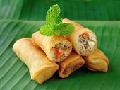 picture of thai cuisine  - Fried Chinese Traditional Spring rolls food for appetizer - JPG