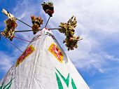 pic of pee  - A pair of Native American tee pees - JPG