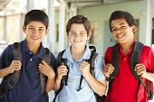 stock photo of pre-teen boy  - Pre teen boys at school - JPG
