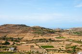 picture of gozo  - Dry Maltese countryside in summer time - JPG