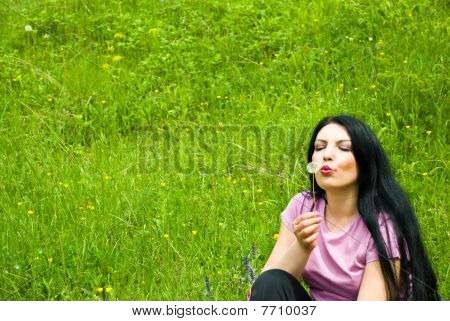 Blowing Dadelion On A Green Field