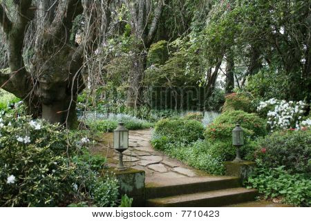 Tranquil & Mysterious Garden path