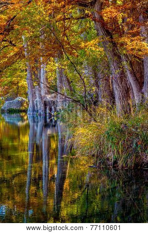 Beautiful Fall Reflections in the Frio River at Garner State Park, Texas